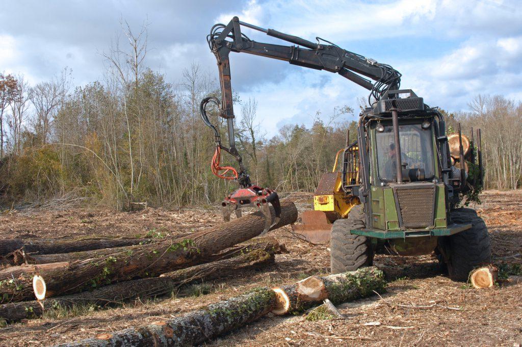 Entretien forêt - débardage