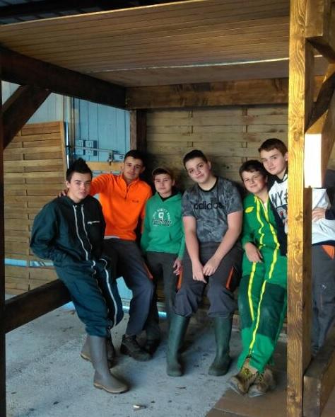 Collège en EPI : construction de la crèche