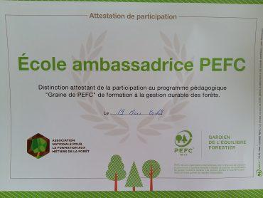 Promouvoir la Gestion durable de la Forêt